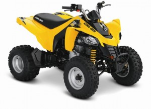 Can-Am DS 250 ATV